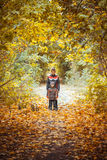 Two brothers in autumn park Royalty Free Stock Image
