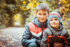 Two brothers in autumn park. Brothers walking with his four year old brother in the autumn park. Vertical view Stock Photography