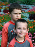Two brothers - best friends. Portrait of two boys, siblings, brothers and best friends Royalty Free Stock Photos