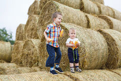 Two brothers in a countryside Royalty Free Stock Images