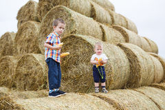 Two brothers in a countryside Royalty Free Stock Image