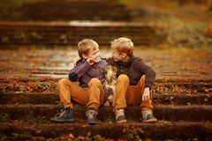 Two brothers and a dog. Sitting on the steps stock images
