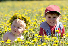 Two brothers in field of dandelions Royalty Free Stock Photos
