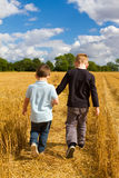 Two brothers holding hands in the wheat fields. Two boys holding hands in the wheat fields with blue sky Royalty Free Stock Photos