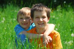 Two brothers in meadow Stock Image