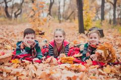 Two brothers and one sister, laying in the autumn leaves. royalty free stock images