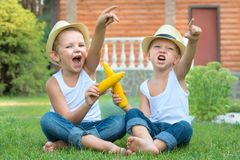 Free Two Brothers Sitting On The Grass And Eat Corn On The Cob In The Garden.Fun Games,laughter. Royalty Free Stock Photography - 141491737