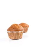 Two brown banana muffin in paper cupcake holder Stock Image