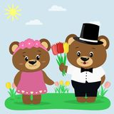 Two brown bears in clothes on a summer glade. A boy gives tulips to a girl. royalty free illustration