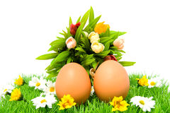 Two brown chicken eggs on grass with flowers Stock Photography
