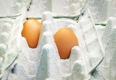 Two brown eggs in empty carton package Royalty Free Stock Image