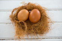 Two brown eggs in the nest. Close-up of two brown eggs in the nest on wooden surface royalty free stock images