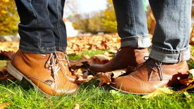Two brown leather shoes kissing in autumn yellow park stock video