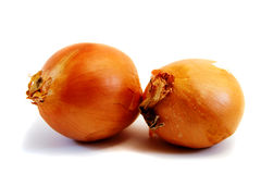 Two Brown Onions Royalty Free Stock Images