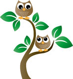Two brown owls in a tree. Two brown owls sitting in a tree header banner logotype or print for children fashion interior industry royalty free illustration