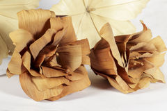 Two brown paper flowers in front of other cream. Several decorative paper flowers of different forms and colors (brown and cream), isolated on white background Royalty Free Stock Image