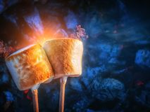 Two brown sweet marshmallows roasting over fire flames. Marshmallow on skewers roasted on charcoals. Sweet love concept.  Stock Image