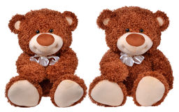 Two brown teddy bears Stock Image