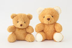 Two brown teddy bears look cute. Two brown teddy bears look cute on a white background Stock Image