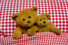 Two brown teddy bears lying in checkered bed. Royalty Free Stock Photos