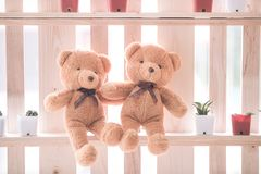 Two brown teddy dolls sitting together on wood shelf royalty free stock images