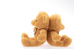 Two brown teddy isolated on white background. stock photography