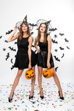 Two brunette girls wearing black dresses, witch hats and high heels hold halloween pumpkins on the background with bats stock photos