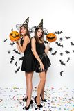 Two brunette women wearing black dresses, witch hats and high heels hold Halloween pumpkins on the background with bats royalty free stock photo