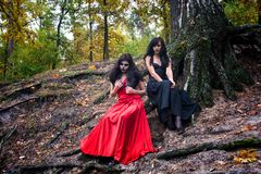 Two brunettes women with makeup like a Halloween skull and Hallo. Ween witch makeup sits in a red and black dresses in the autumn forest on the roots of a tree Royalty Free Stock Images