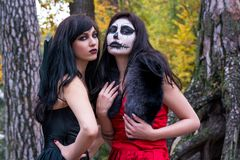 Two brunettes women with makeup like a Halloween skull and Hallo. Ween witch makeup stands in a red and black dresses in the autumn forest on the roots of a tree Royalty Free Stock Image