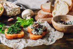Two Bruschettas with Fresh Greens and Agaricus. Two Baked Bruschettas with Fresh Greens and Agaricus and Ingredients on Background Royalty Free Stock Photos