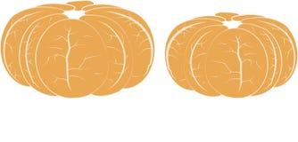 Two brushed orange mandarins, white veins, on white Royalty Free Stock Photography