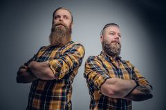 Two brutal bearded men dressed in a plaid shirt. royalty free stock photos