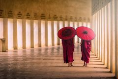 Two buddhist monk novice holding red umbrellas and walking in pa. Goda, Myanmar stock photos