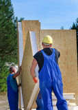Two builders installing a wooden wall panel Royalty Free Stock Photo