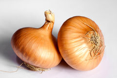 Two bulb onion Royalty Free Stock Photo