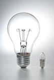 Two bulbs. On white background royalty free stock images