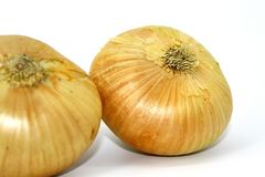 In the Golden husk are two useful onions on a white background stock photography