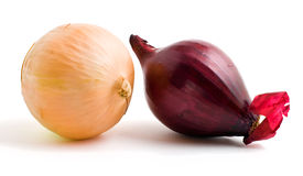 Two bulbs of red and yellow onion. Isolated on a white background Royalty Free Stock Images