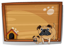 Two bulldogs beside a wooden board Royalty Free Stock Images