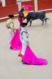 Two bullfighters Royalty Free Stock Photography