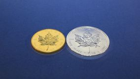 Two Bullion Coins, Gold and Silver. Two rows of Gold and Silver bullion coins, one-ounce Maple Leaf gold and silver bullion coins zoomed in on on a calm blue stock footage