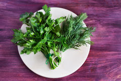 Two bunch of dill and parsley. On a light plate stock images