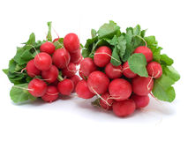 Two bunch of radishes. On a white background Stock Images