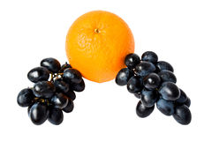 Two bunches of black grapes and orange. Royalty Free Stock Photo
