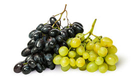 Two bunches of grapes Stock Images