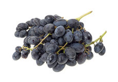 Two Bunches Of Black Grapes Royalty Free Stock Photo
