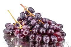 Two bunches of red grapes on a white mirror background with reflection and water drops isolated close up royalty free stock photos