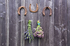 Two bundles of oregano and hyssop herbs and three horseshoes on wall. Two bundles of oregano and hyssop herbs and three horseshoes hanging on old wooden wall royalty free stock photos