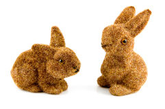 Two bunnies Royalty Free Stock Images
